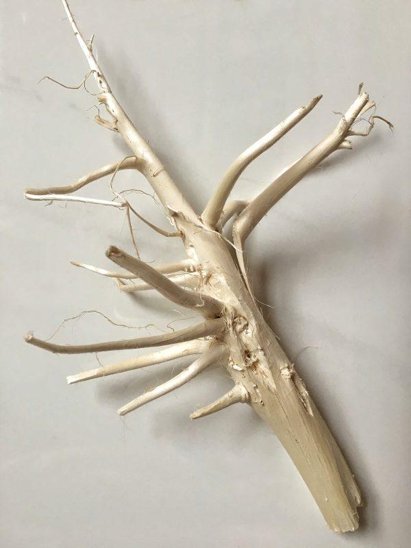 Ozdobny korzeń konopi 1