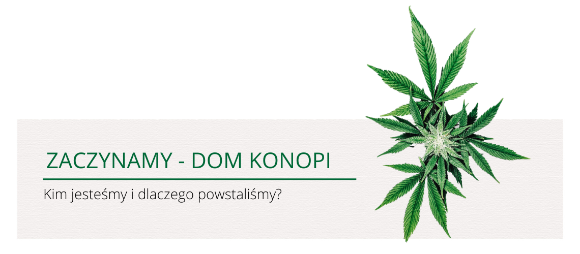 To my! - Geneza Domu Konopi 14
