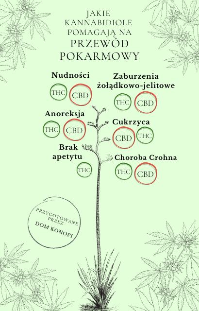 Co to jest konopia siewna i jakie ma właściwości? 9