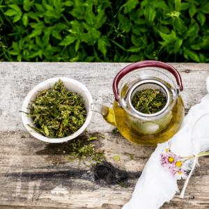 Jak zaparzyć herbatę z konopi? 3